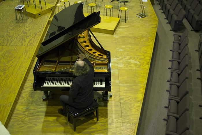 MichelDewit_PianoStemmer